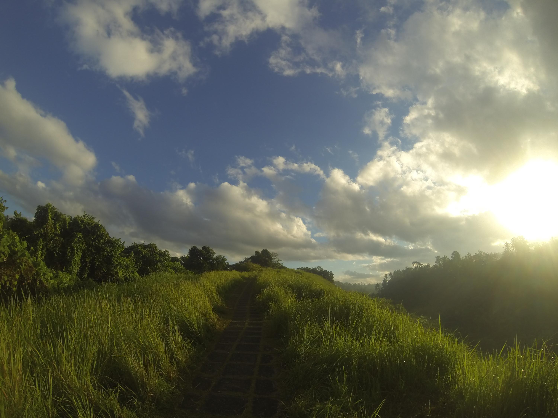 Bali – Part II, Ubud // a GoPro vidéo